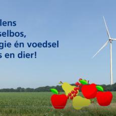 Blog: Energie, biodiversiteit en landschap samen laten gaan