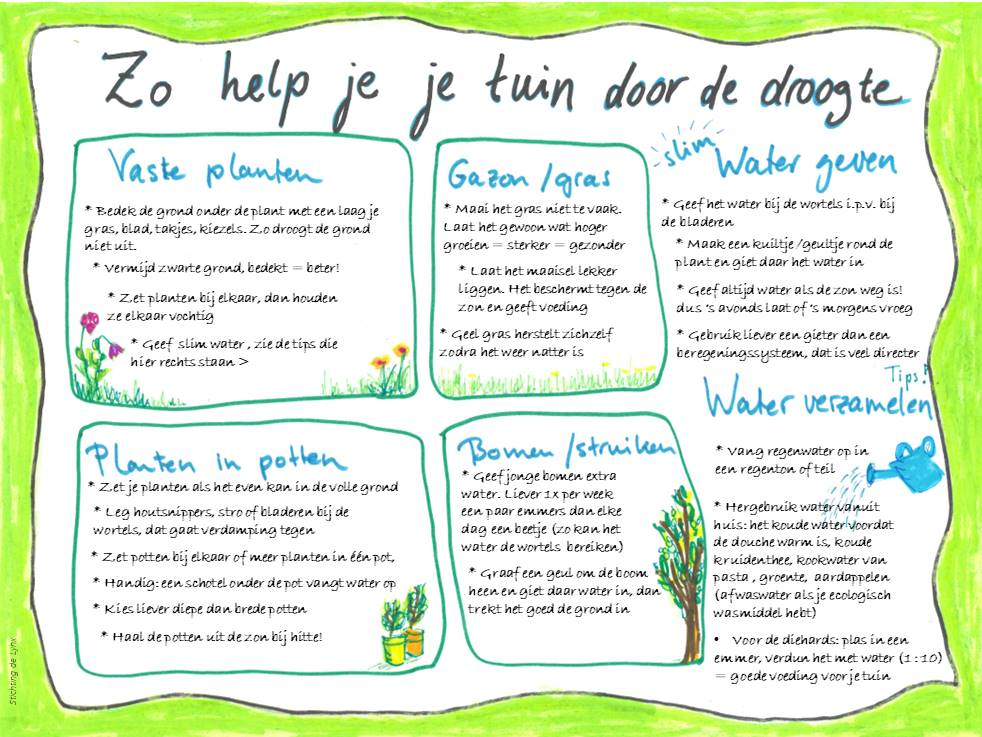 tips droogte tuin